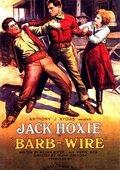 Barb Wire 海报