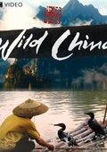 BBC:美丽中国