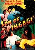 Son of Ingagi 海报