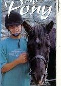 My Pony Boy 海报