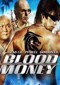 少林杀手:血钱 海报