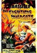 The Fighting Wildcats 海报