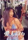 Subway Serial Rape: Lover Hunting 海报