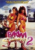 Bikini Summer II 海报