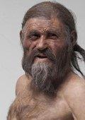 """NHK:解开""""冰人""""之谜.~一个5000年前的男人的述说 海报"""