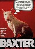 Baxter 海报
