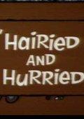 Hairied and Hurried 海报
