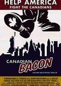 反转加拿大 海报