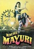 Naache Mayuri 海报