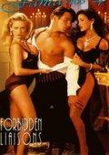 Erotic Fantasies 4 海报