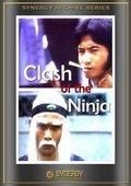 Clash of the Ninjas 海报