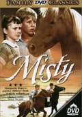 Misty 海报