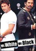 Mr. White Mr. Black 海报