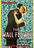 The Wall Flower 海报