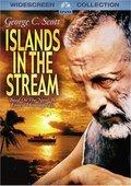 川流中的岛渚 海报