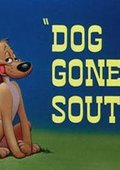 Dog Gone South 海报