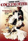 Cockfighter 海报