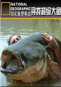 寻找超级大鱼 海报