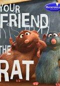 你的老鼠朋友 海报