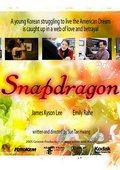 Snapdragon 海报
