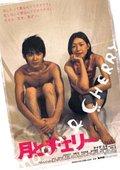 Tsuki to Cherry 海报
