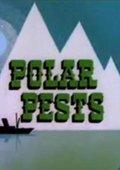 Polar Pest 海报