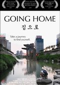 Going Home 海报