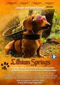 Lithium Springs 海报