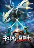 宠物小精灵BW:酋雷姆VS圣剑士 海报