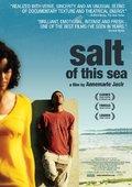 海之盐 海报