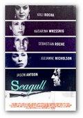 Seagull 海报