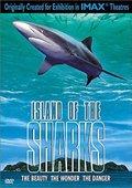 鲨鱼岛 海报