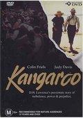 Kangaroo 海报