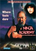 Ninja Academy 海报