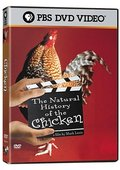 The Natural History of the Chicken 海报