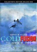 Cold Fusion 海报