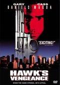 Hawk's Vengeance 海报