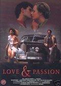 爱与激情 海报