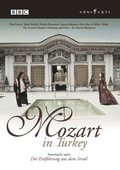 Mozart in Turkey 海报
