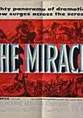 奇迹 海报
