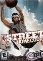 NBA街头篮球主场