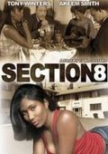 Section 8 海报