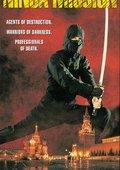 The Ninja Mission 海报