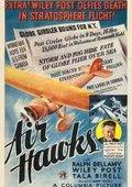 Air Hawks 海报
