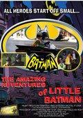 The Amazing Adventures of Little Batman 海报
