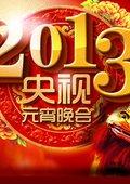 2013央视元宵晚会 海报