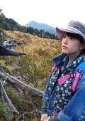 川岛海荷:生命的力量 日本天然杉 海报