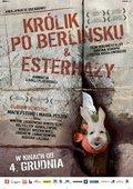 柏林墙的野兔 海报