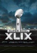 2015年美国第49届NFL超级碗