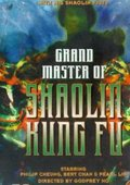 Grand Master of Shaolin Kung Fu 海报